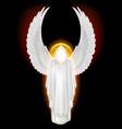 White angel on black vector image vector image