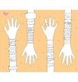 Fashion Bracelets And Rings vector image