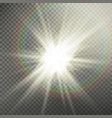 sunlight special lens flare light effect light vector image