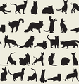 Seamless background with cats vector