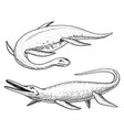 dinosaurs elasmosaurus mosasaurus skeletons vector image