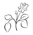 black plant for design vector image