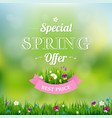 spring offer banner vector image
