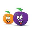 plum orange vector image
