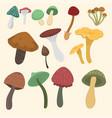amanita fly agaric toadstool mushrooms fungus vector image