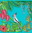 floral hand drawn tropic background vector image