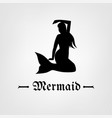 mermaid image vector image