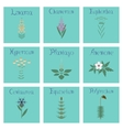 assembly flat Chamerion Linaria vector image