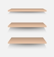 Brown shelves on white wall vector image