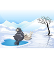 Two seals sitting on ice vector image vector image