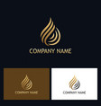 gold water drop swirl logo vector image