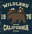 california vintage style vector image