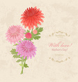 bouquet of lovely chrysanthemums on a background vector image vector image