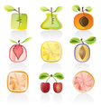 abstract fruit icons vector image