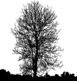 Dead tree vector image