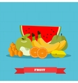 Fruits food products in flat vector image