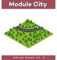 Isometric view projection vector image