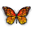 Orange Butterfly Monarch vector image vector image