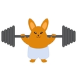Strong bunny vector image vector image