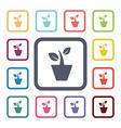 houseplant flat icons set vector image