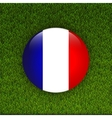Flag of France on green grass field vector image