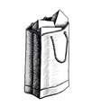paper bag with presents vector image