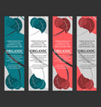 gmo free banners vector image