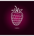 Raspberries in the Contours vector image