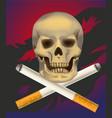 no smoking cigarette vector image vector image