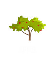 apple tree icon flat style vector image