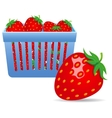 Strawberries in a basket vector image