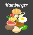 hamburger ingredients vector image