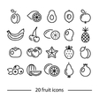fruit line icons vector image