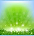spring sunburst poster vector image