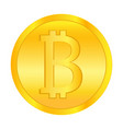 bit coin gold money vector image