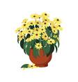 blooming flower vector image