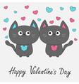 Happy Valentines Day Gray contour cat couple vector image