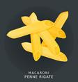 traditional italian kitchen macaroni penne vector image