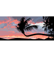 silhouette of palm trees at sunset vector image