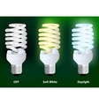 Compact fluorescent lamp vector image