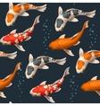 Seamless koi carps vector image