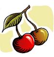 two berries vector image vector image