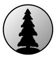 Fir tree button vector image
