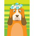 Basset hound with flower wreath on head over green vector image