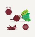 beet flat icon vector image