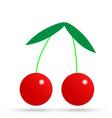 red cherry icon vector image