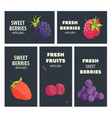 bright fruit cards vector image