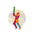 Cricket Player Batsman Batting Low Polygon vector image