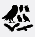 Owl bird silhouettes vector image