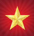 Gold glitter star vector image